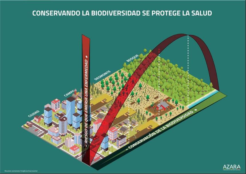 Conservando la biodiversidad se protege la salud