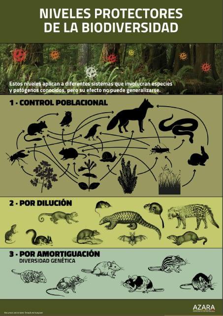 Niveles protectores de la Biodiversidad